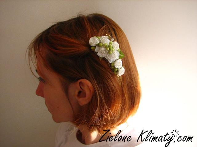 zielone klimaty - kwiaty Lublin