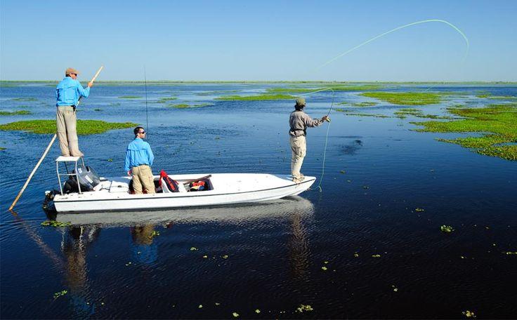 #Pesca en el Iberá, #Corrientes.  Más info en www.facebook.com/viajaportupais