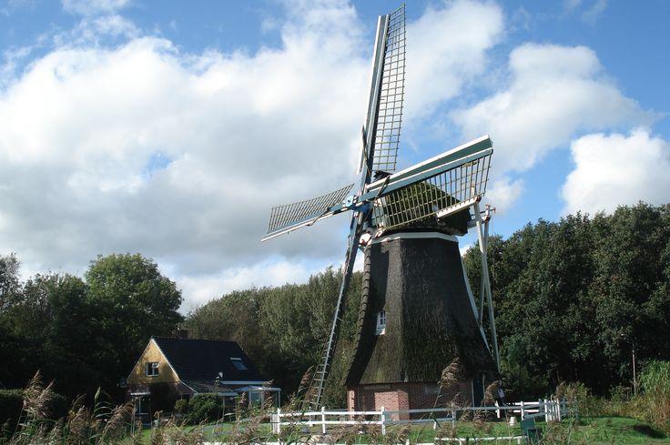 de molen in Wedderveer