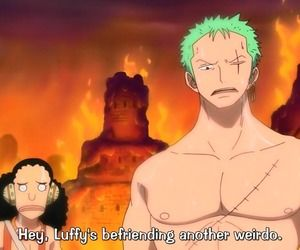 One Piece summed up in one sentence