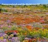 A Book and eBook filled with photographs of the vast landscapes, masses of wild flowers and unworldly flora of Namaqualand and the Richtersveld. This semi-desert region in the Northern Cape of South Africa, is known for it's spectacular unspoilt nature.    By Martin P Heigan    ISBN 978-0-9802755-1-3