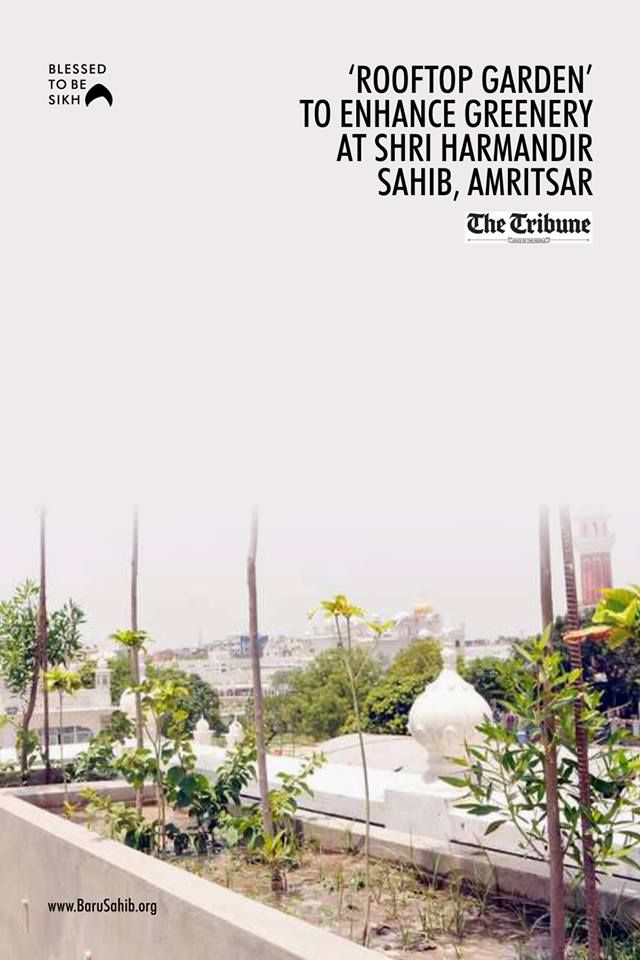 Gogreen Amritsar Rooftop Garden To Enhance Greenery At Shri