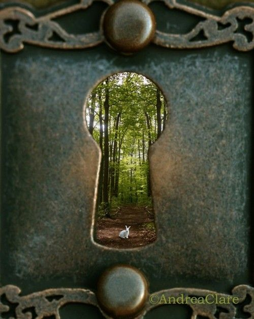 "Photographer Andrea Clare is responsible for this whimsical and simplistic picture we see. ""Alice in Wonderland"" inspired photography is one thing, but Clare captured multiple element to the story with one snap of the camera. A real White Rabbit is seen through a key hole. Soft. Elegant and romantic."