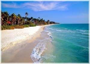 Naples Florida | Florida Sunday: Naplesflorida, Favorite Places, Gulf Coast, Orlando Florida, Sea Salts Scrubs, Naples Florida, Florida Vacations, Florida Beaches, Honeymoons Destinations