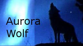 My fantasy short story, Legacy, was published in Aurora Wolf Vol 3 Issue 10
