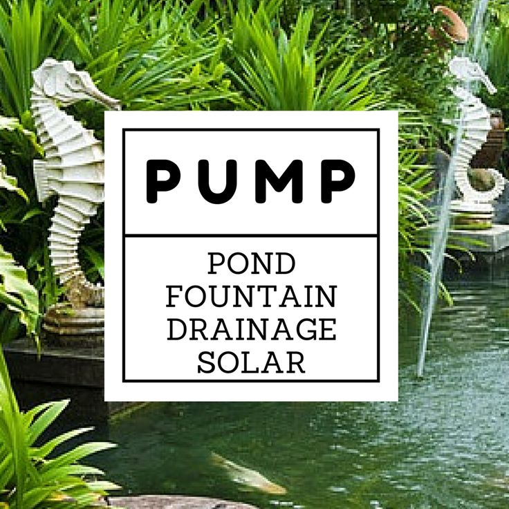 Wide range of Water Pumps. Call us!