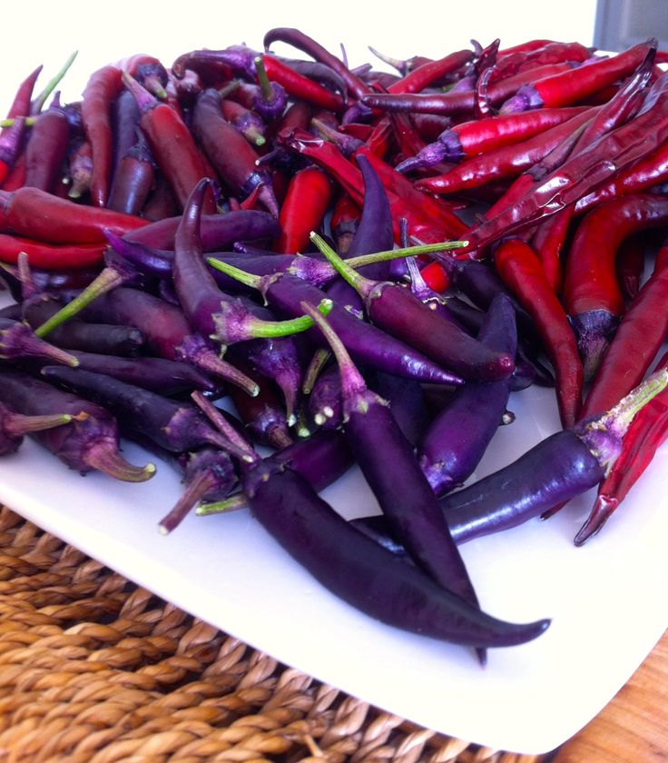 17 best images about chilli growing on pinterest limo - Best romanian pepper cultivars ...