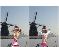 Stenzo tricot digital giraffe