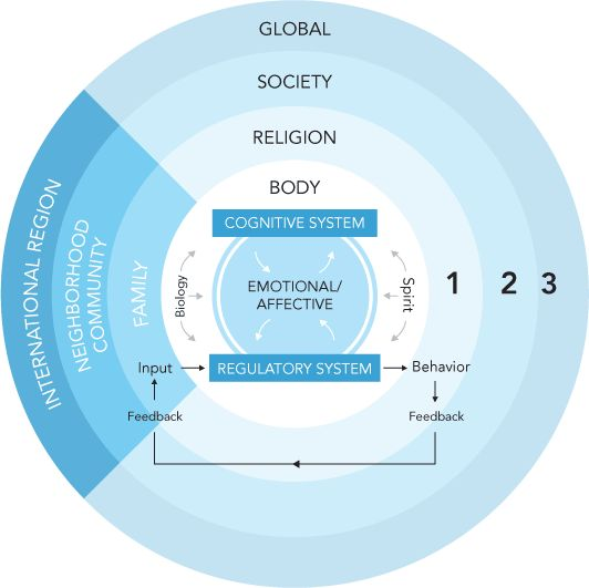 bronfenbrenner s ecological approach to human development We describe the evolution, over three phases, of bronfenbrenner's theory from an ecological to a bioecological theory phase 1 (1973–1979) culminated in the publication of the ecology of human .