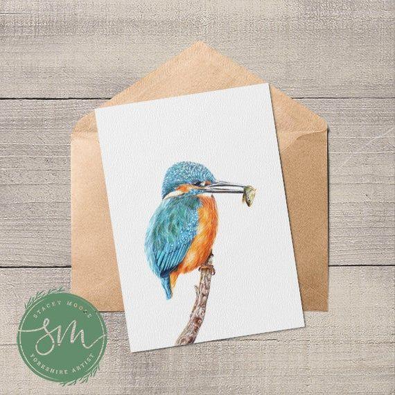 Pin By Emily Mason On Art Card Illustration Artist Card Kingfisher