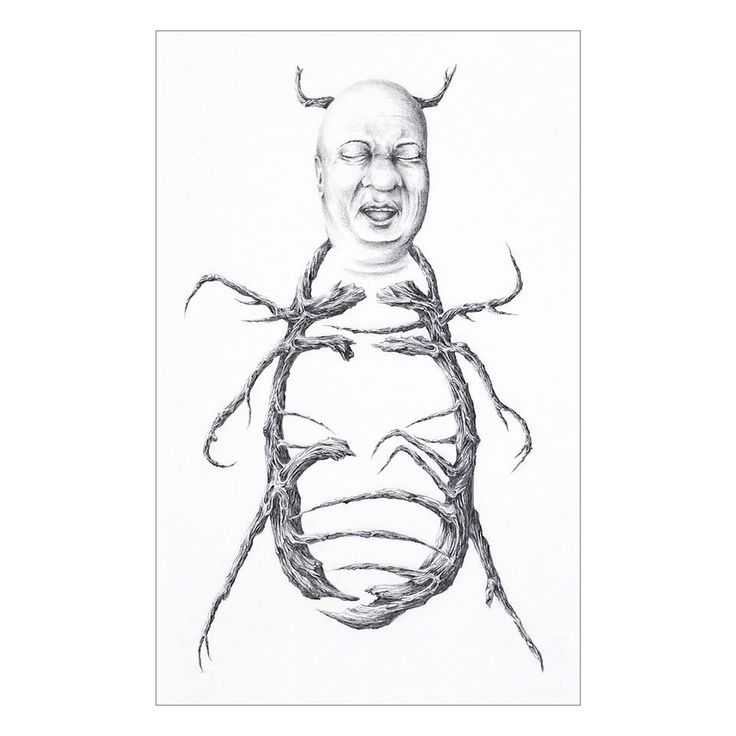 BEETLE by Nathalie Lagace. At Gallery Arch Enemy Arts, contact archenemyarts@gmail.com. #drawing #artcollectors #graphite #art #phillyart #archenemyart