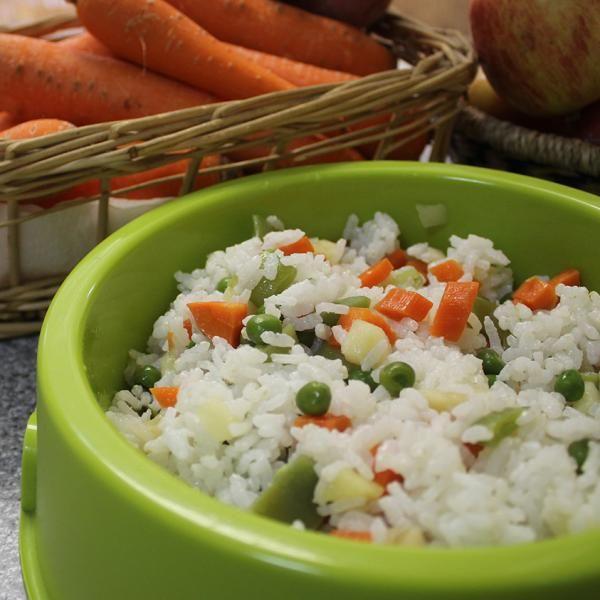 Alimentos caseros para perros, ¡prepara comida natural a tu mascota!