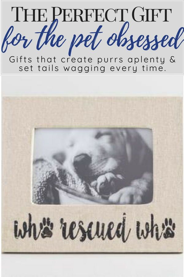 Who Rescued Who Linen Tabletop Frame Cherish Your Favorite Memory