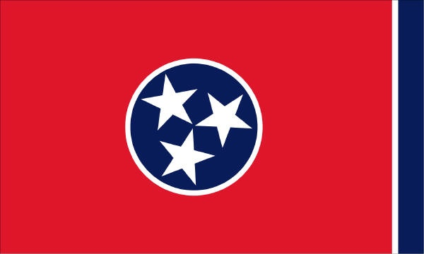 Our Tennessee State Flag.  The 3 stars represent the 3 different forms of land in Tennessee.  Mountains in the East, highlands in the MIddle and lowlands in the West.  I live in West Tennessee.