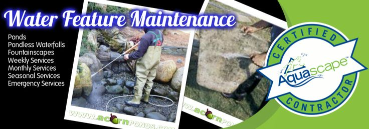 Pond Maintenance | Cleaning | Rochester - NY-Acorn Ponds & Waterfalls
