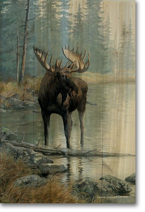 Quiet Water Moose Wood Wall Art Cabins Amp Critters In The
