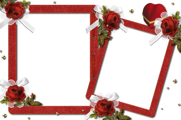 Double Romantic Transparent Photo Frame With Roses