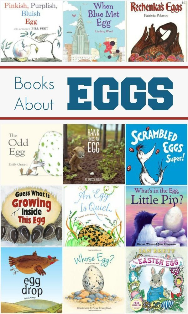 Collection of great books about eggs. Features stories about eggs and nonfiction books with information about eggs.