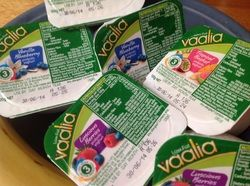 Chemical free Yogurt!