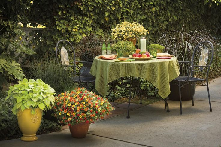 Group containers with one plant variety in each - makes a statement!: Gardens Flowers, Gardening Patio Container, Garden Ideas, Favorite Places, Outdoor Living, Gardening Ideas, Gardening Outdoor Spaces, Container Gardening