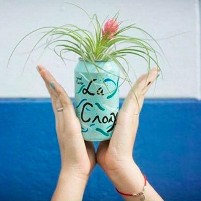 La Croix is *everything*.