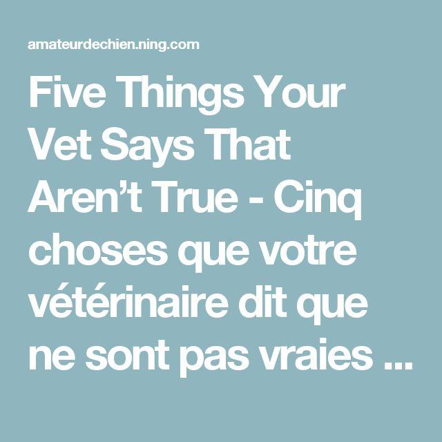 Five Things Your Vet Says That Aren't True - Cinq choses que votre vétérinaire dit que ne sont pas vraies - Amateur de chiens - Dog Lovers