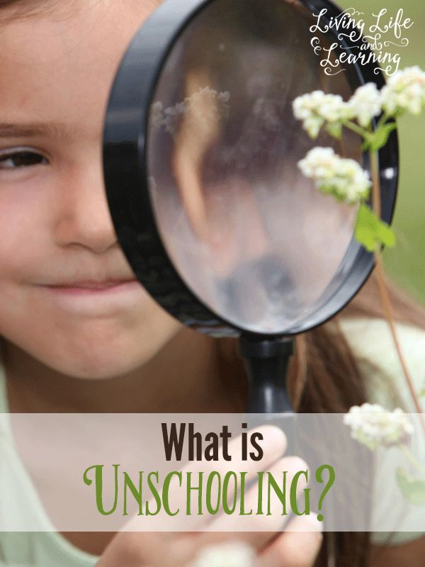 Have you thought about unschooling your children in your homeschool? What is unschooling? Is it right for your family?