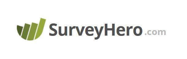 Surveyhero Create Online Survey Online Surveys Online Business