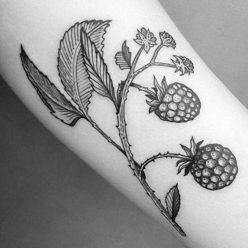 Illustrative style blackberries tattoo on the forearm. Tattoo...