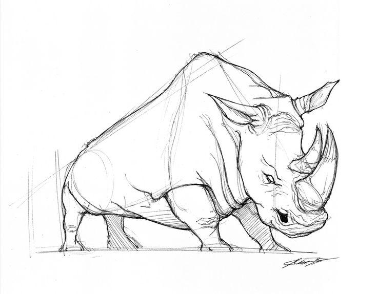 813 best save the rhinos images on pinterest rhinos rhinoceros rhino head art google zoeken ccuart Gallery