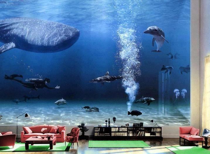 Bill Gates Living Room - Celebrities - Nigeria