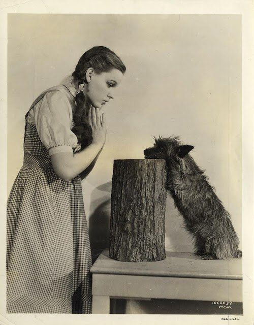 Judy Garland in Wizard of Oz. 1939