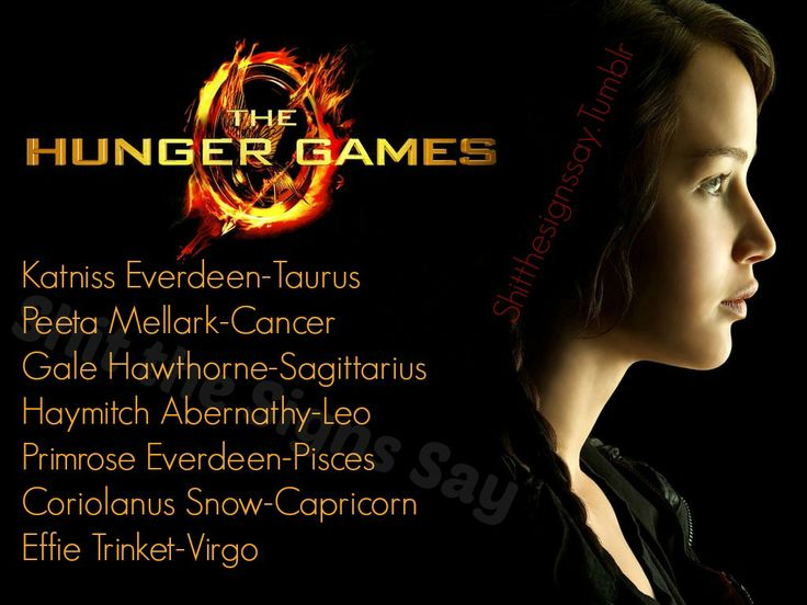Book report on the hunger games book