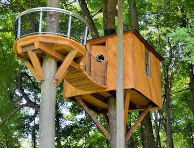 Architectural Technologist - A tree house to ponder