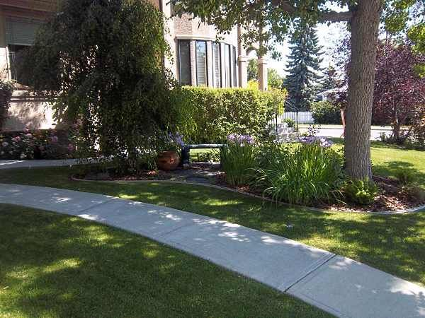 Mow over edging provides a nice clean border around this for Nice front yard landscaping
