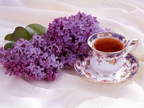 Tea Cup...Lovely
