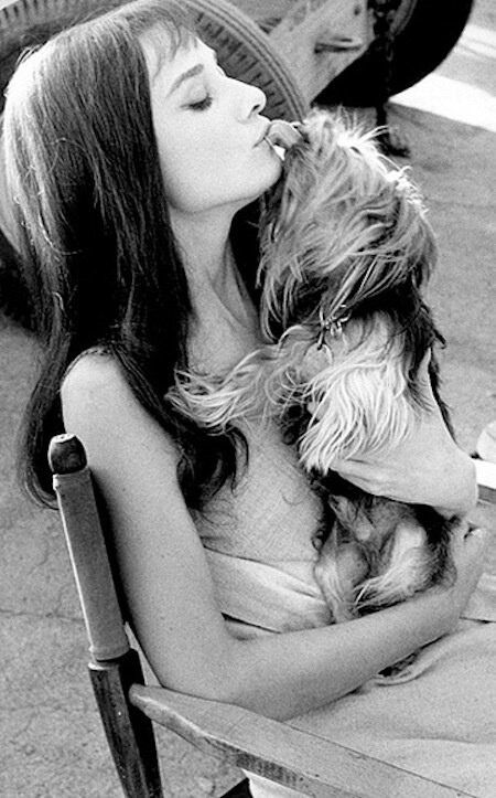 Audrey Hepburn and her Yorkie, Mr. Famous
