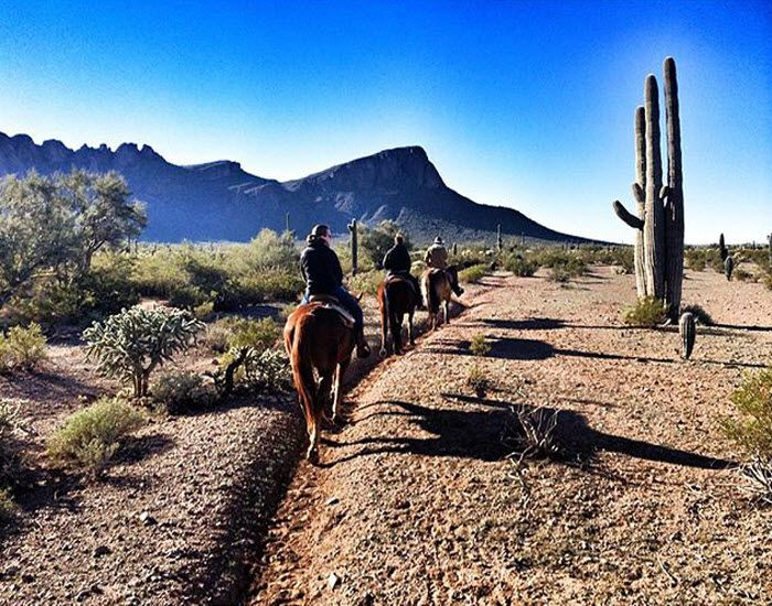 Image result for horseback riding tucson tumblr