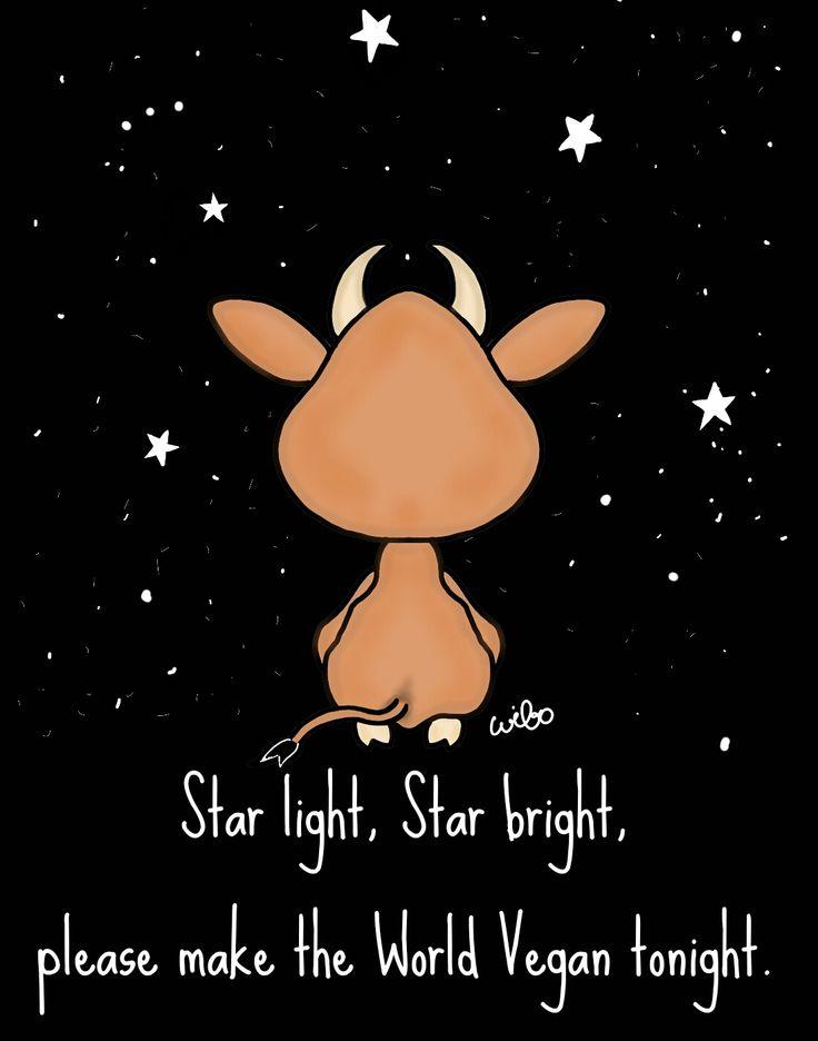 star light, star bright, please make the world vegan tonight #vegan