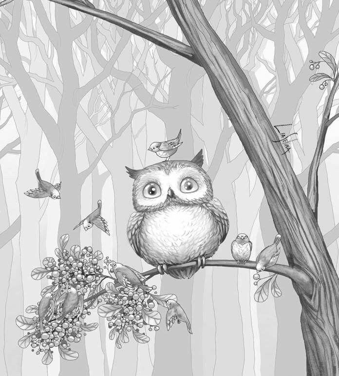 Free greyscale animals to color in | Free coloring pages for adults | Free printable