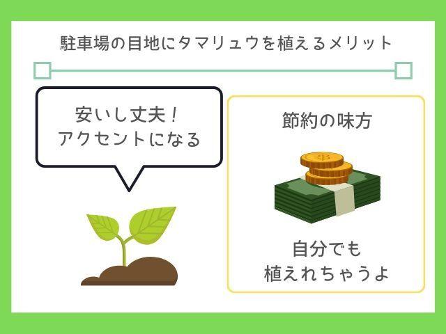 以下の3つです 自分でも植えられる 価格が安い 砂利と違って散らから