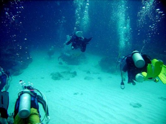 Best Diving Spots in Curacao