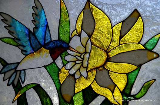 Digital Flower Pictures.com: Stained Glass