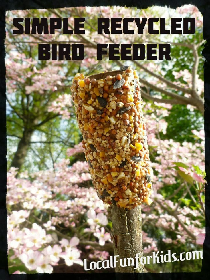 Earth Day Craft for Kids: Recycled BirdFeeder - Home - LocalFunForKids, Best Blogs for Local Fun, Easy Crafts, Activities, Motherhood