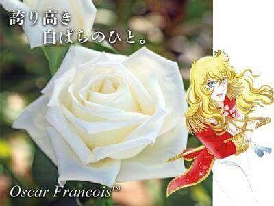 """本日の薔薇""""  ^^  オスカル フランソワ™[Oscar Francois™] フランス  メイアン作 2014年発表   清らかに澄み切った白の大輪花は、フランス 革命の時代を情熱的に生きた男装の麗人オ スカル・フランソワ・ド・ジャルジェの面影そ のものです。すらりとした茎に凛々しく咲く剣 弁高芯の花は、正統派のバラのオーラを放ち ます。また、見た目だけでなく、芳香まで備え ています。花首の長さ、葉、茎のバランスが良 く、整った樹形に育ちます。耐暑性、耐病性に すぐれる稀少な白バラ大輪品種として、お庭 の中でも特別な存在感を示してくれることで しょう。   花径:12cm 樹高:1.5m 四季咲き その他:香⇒ゆたかな香り  ※京阪園芸ガーデナーズのベルサイユのバラはこちらから→ http://www.keihan-engei-gardeners.com/fs/keihangn/c/verubara"""