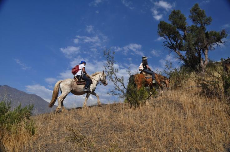 Cabalgata en Cajon del Maipo  Horse riding at El Ingenio, Cajon del Maipo