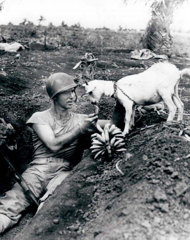 Sharing bananas with a goat during the Battle of Saipan, ca. 1944 - and 29 other fascinating old photographs.