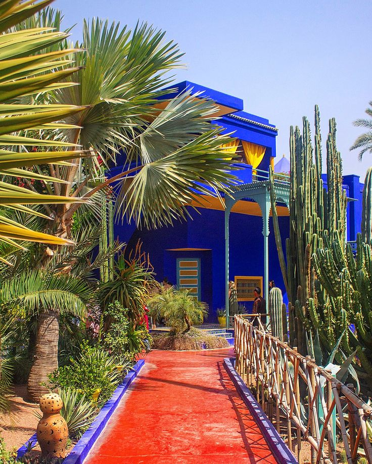 Jardin Majorelle in Marrakesh. A beautiful oasis to escape in from the heat of the city. To avoid the crowds, go in the morning. April 2017. Photographed by Laura Ghitoi.  #JardinMajorelle #GardensOfMarrakesh #Marrakesh