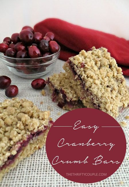 Cranberry Crumb Bars made from canned cranberry sauce. Don't let it sit in your pantry all year, use it in this amazing and frugal dessert or breakfast recipe!