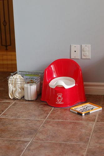 Potty station | Flickr - Photo Sharing!